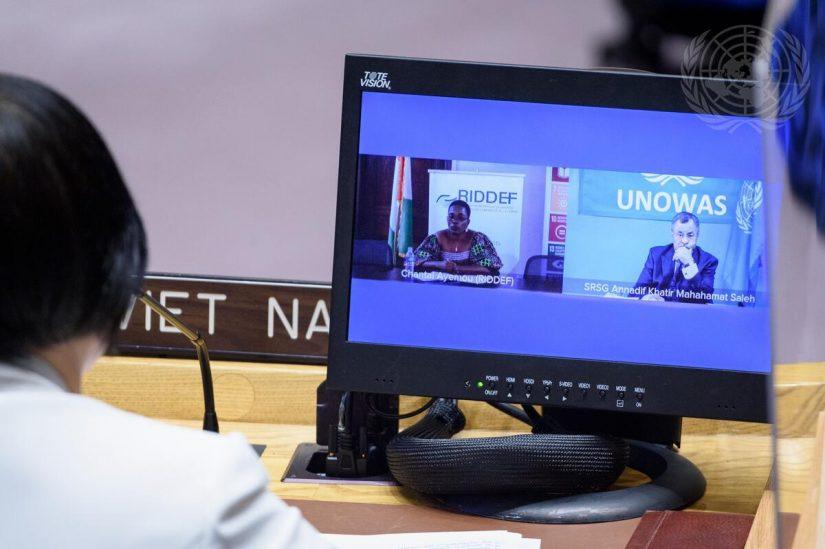Reunión del Consejo de Seguridad sobre la situación en África Occidental