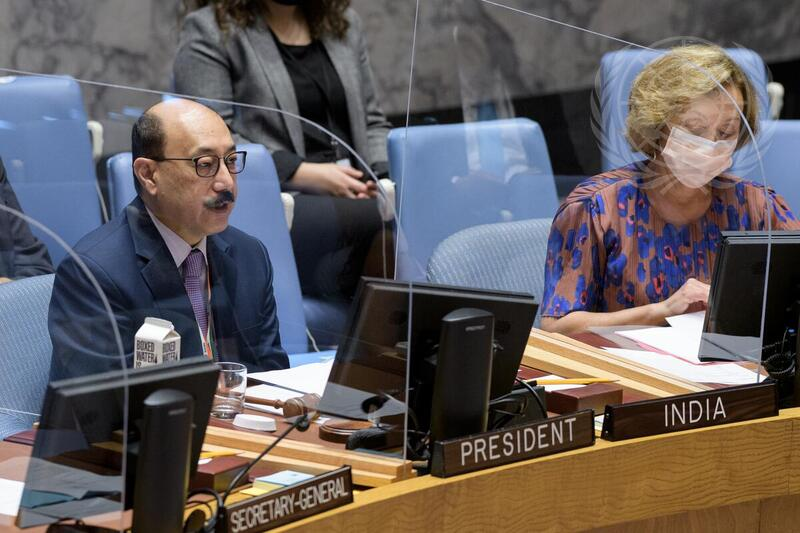 Piden al Consejo de Seguridad reanudar el diálogo sobre los territorios ocupados en Palestina